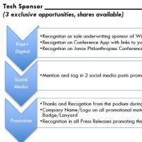 Tech Sponsor